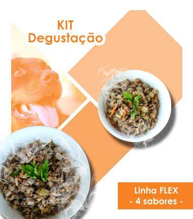 Kit Degustação Linha Flex - 4 unidades
